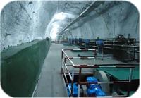 矿用污水处理系统,工作面水净化系统集控厂家 山东中煤电器